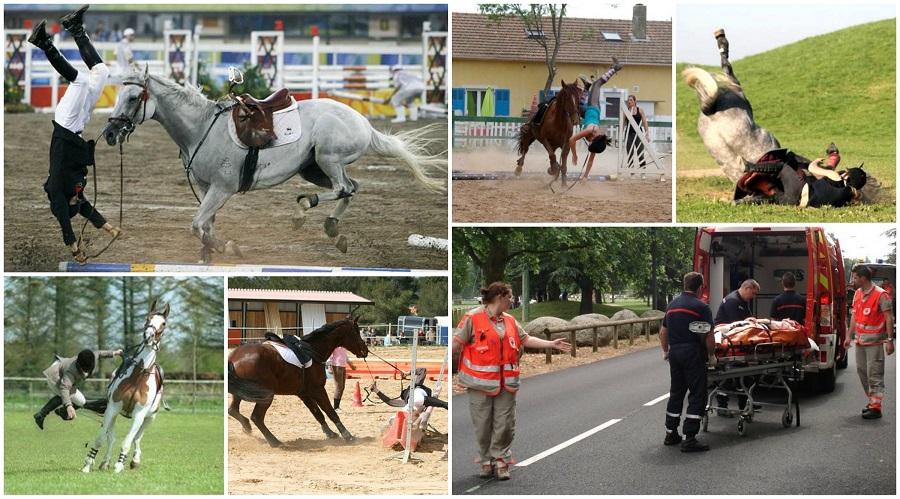 L'équitation, un sport dangereux ? Quels sont les dangers ?