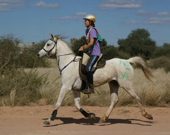 Endurance à cheval en Namibie : une discipline en pleine expansion.