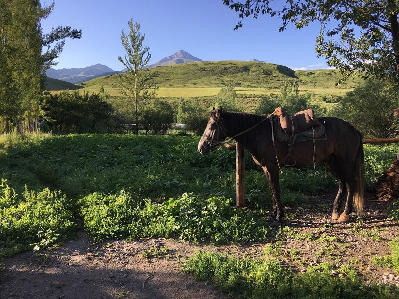 Randonnée Kirghizistan : Départ de notre premier périple dans la montagne