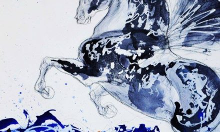 Rencontre avec une artiste passionnée: Sara Foxa