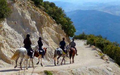 Sicile : randonnée équestre entre terre et mer