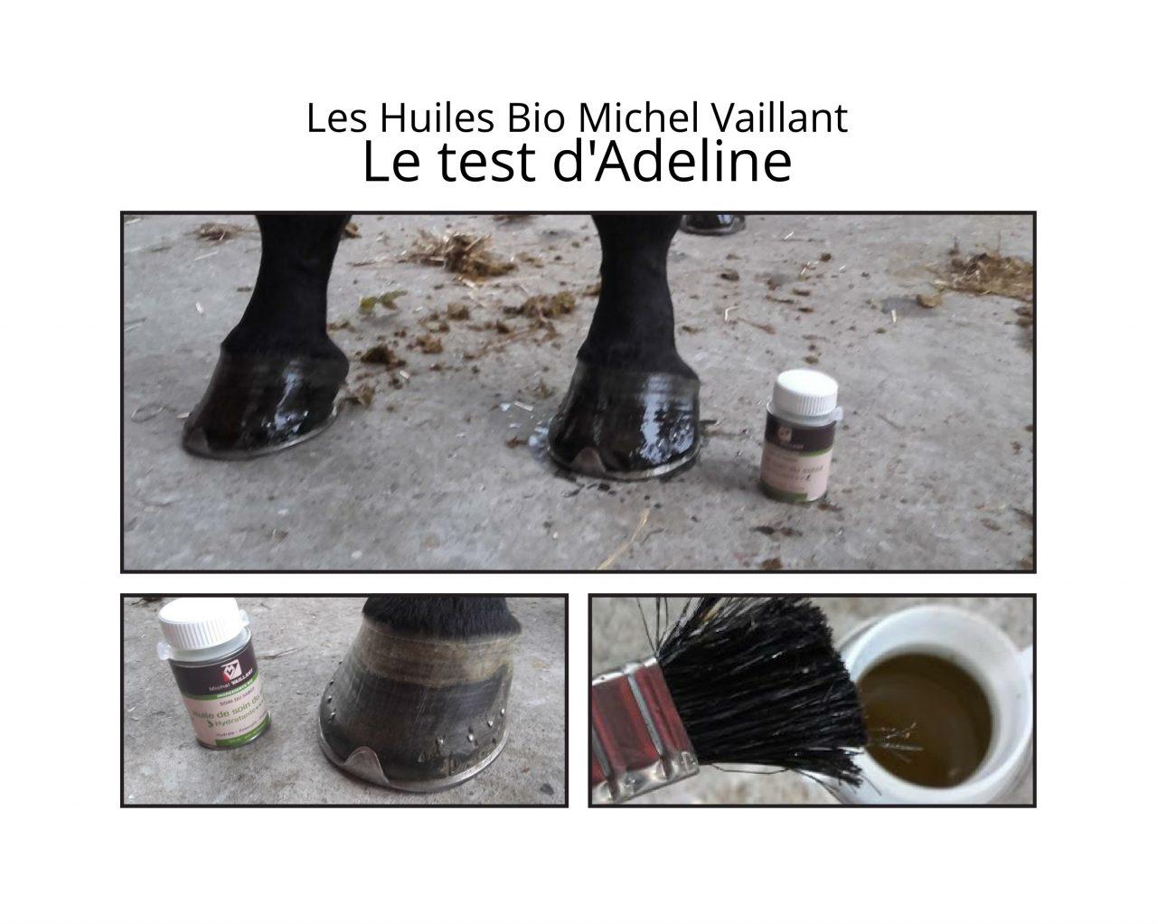 Huiles Bio Michel Vaillant