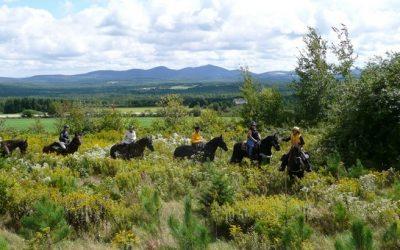 Québec : randonnée équestre et rodéo