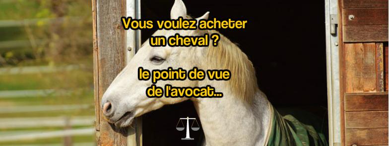 Article avocat acheter un cheval