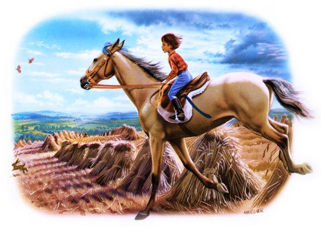 martine premier cheval